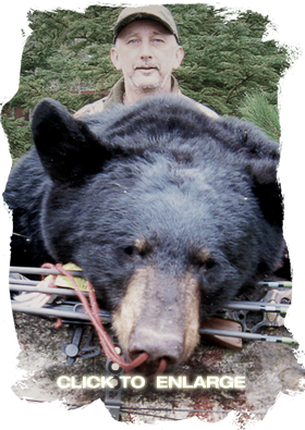 Best Bear hunting in Northwestern Ontario
